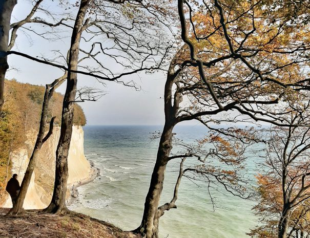 Steilküste Nationalpark Jasmund